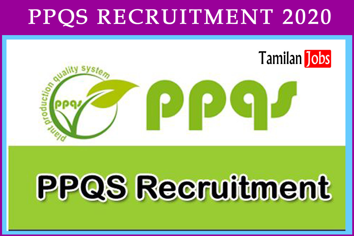 PPQS Recruitment 2020
